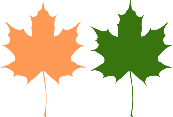 Small clipart maple leaf PNG: Clip · com at