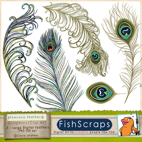 Small clipart peacock ClipArt this DIY Feather Invitation