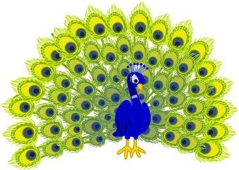 Animl clipart peacock Free Clipart peacock Peacock