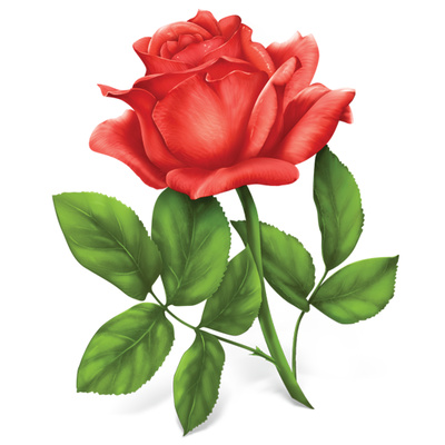3D clipart rose Library Art on Roses Clip