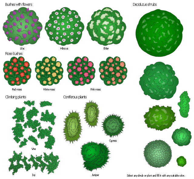 Hedges clipart shrubbery Bushes white (bushes) climbing clipart