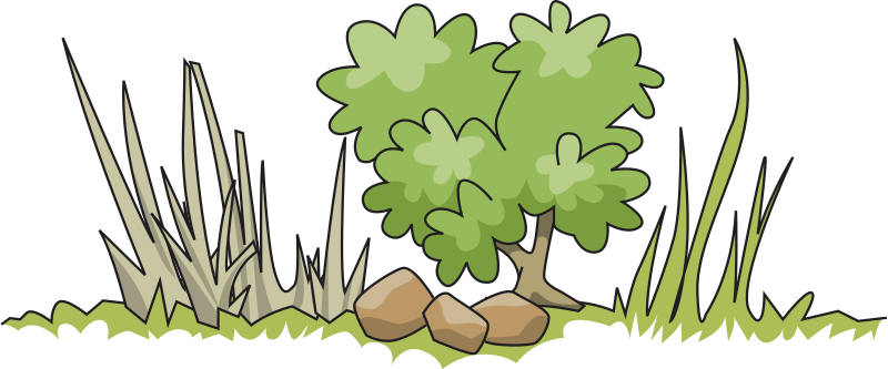 Small clipart shrub Clipart IMAGE bush (PNG) and