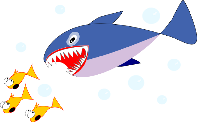 Tiger Shark clipart sea creature #2