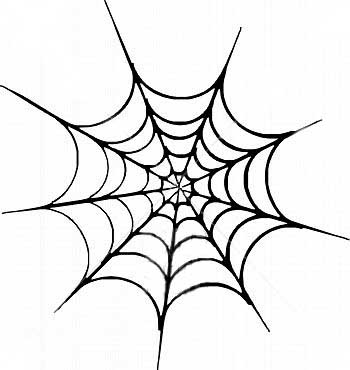 Drawn spider web graphic SPIDER PICTURES FOR PHOTOS IMAGES
