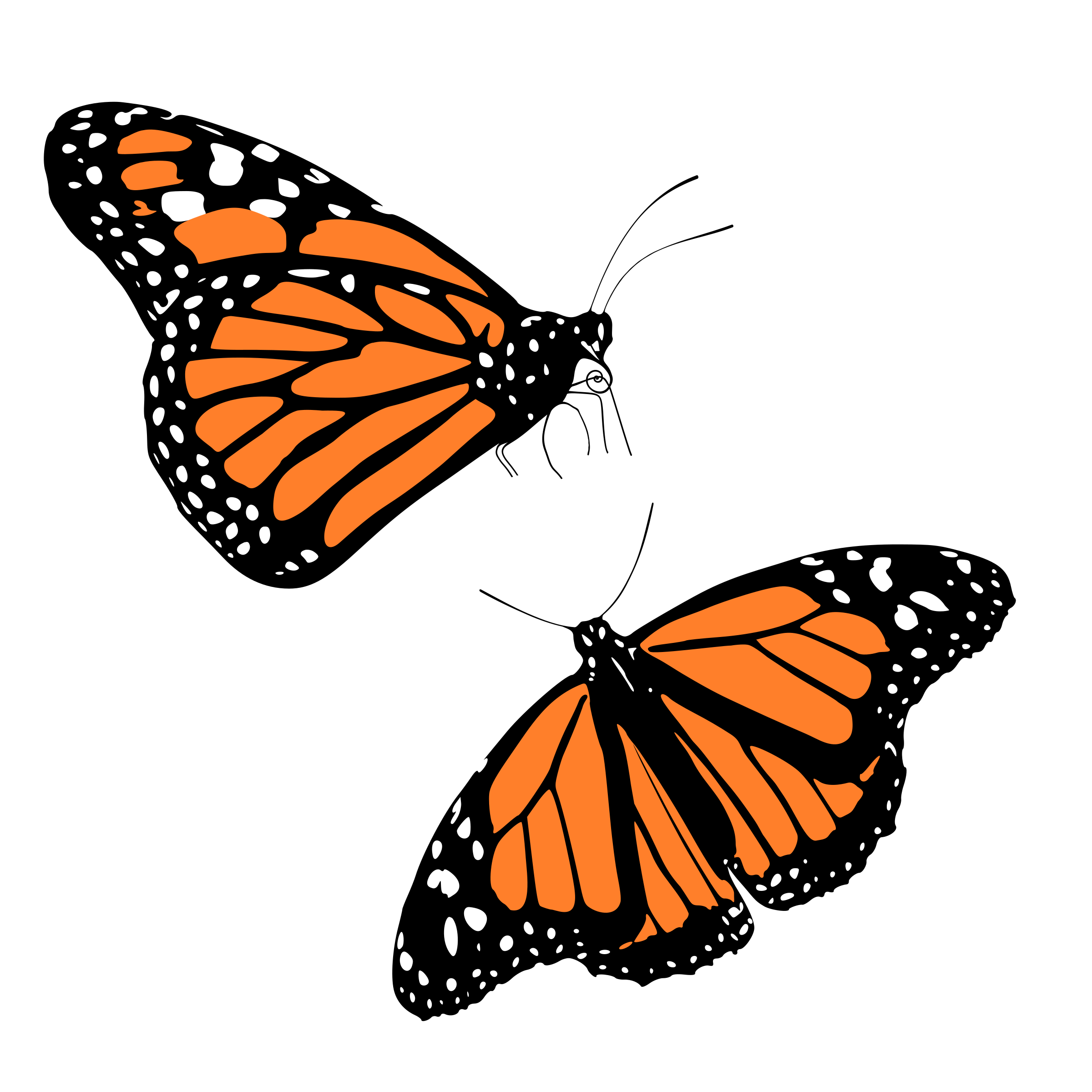 Smiley clipart butterfly Butterflies image clip butterfly monarch