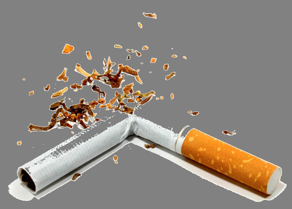 Cigarette clipart tobacco Icons Cigarette Broken and Image