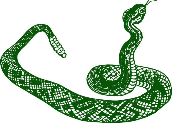 Smooth Green Snake clipart Image online at Snake com