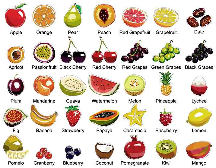 Dried Fruit clipart All  for farmersme Looking