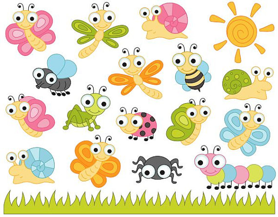 Bugs clipart spider Clipart Snail Snail Art Insects