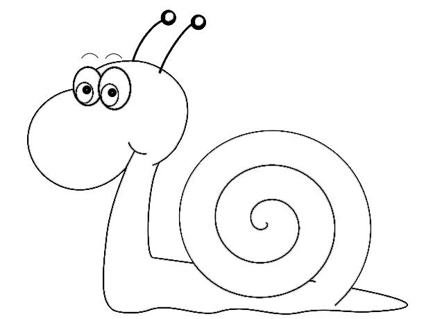 Drawn snail clip art Art art Fans clip snail
