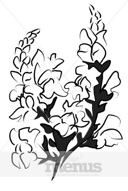 Snapdragon clipart #10