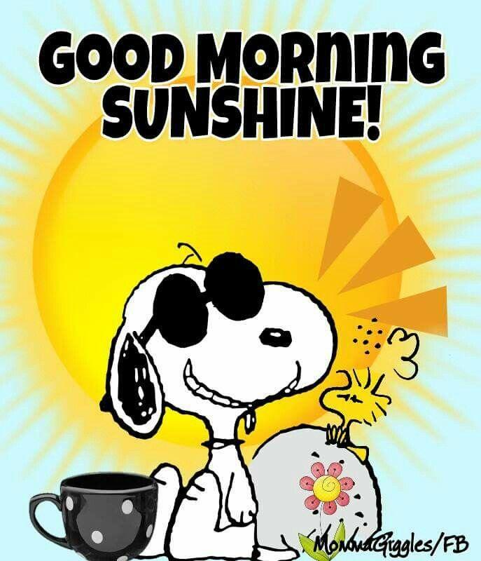 Snoopy clipart sunglass Ground Pinterest on 25+ Good