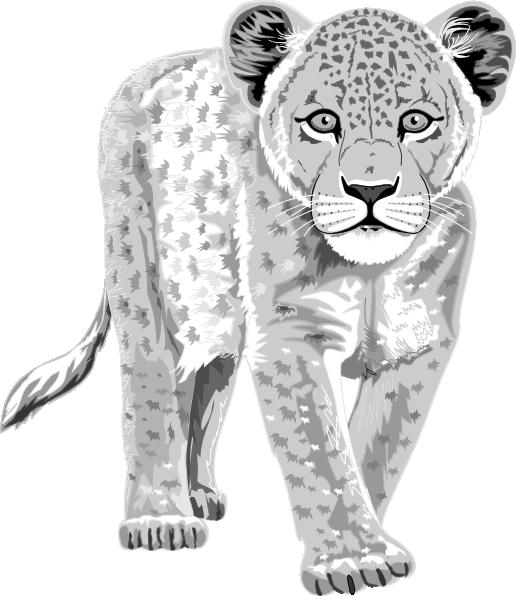 Snow Leopard clipart Royalty Clipart Art Leopard Clip