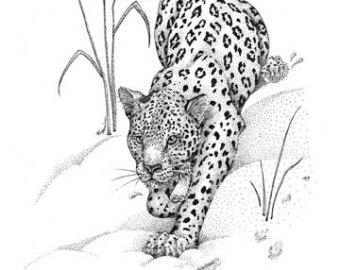 Amur Leopard clipart black and white Print leopard Amur Etsy leopard