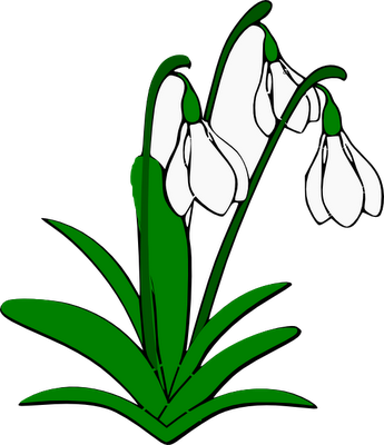 Snowdrop clipart Cliparts Clipart And Daffodil Snowdrop