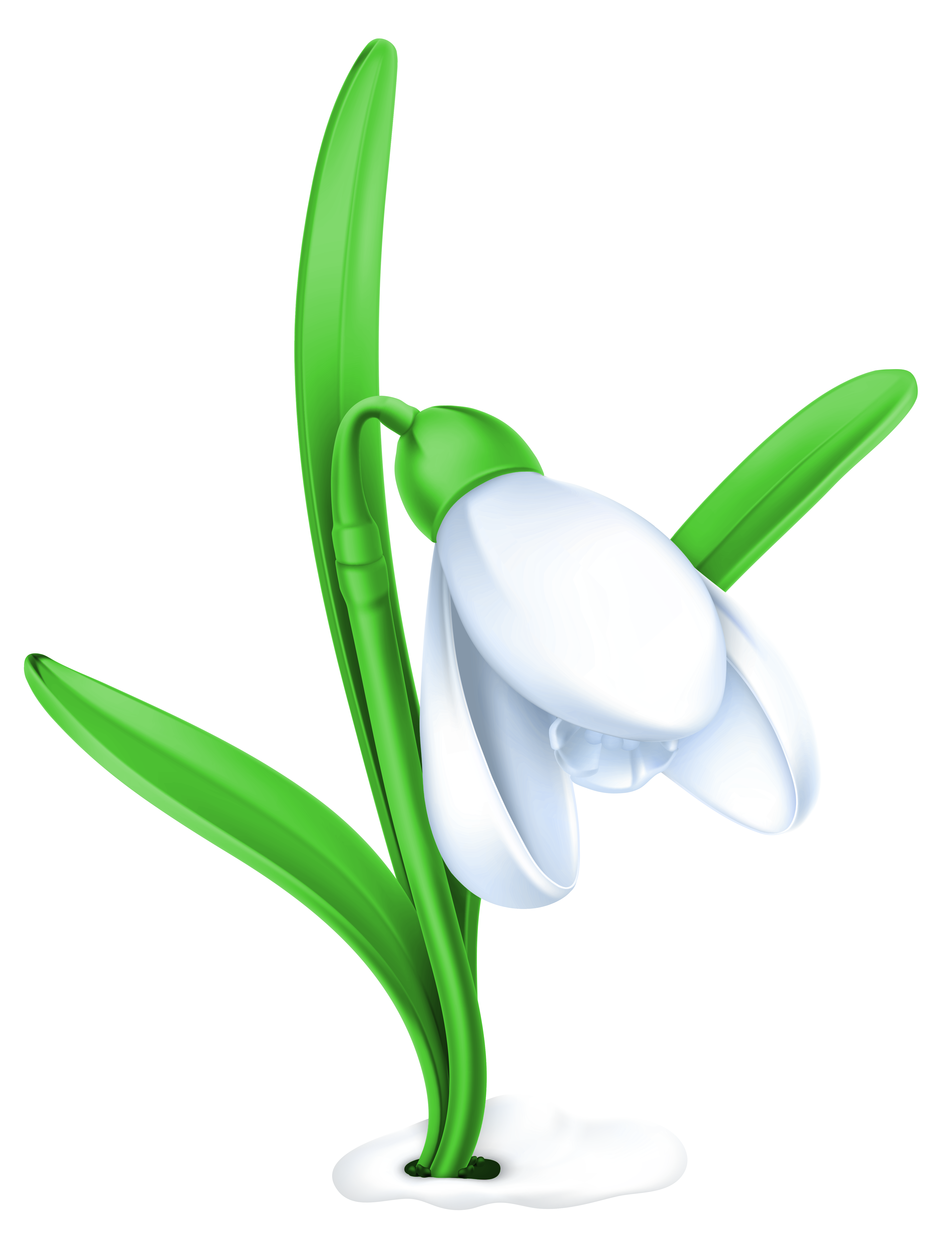 Snowdrop clipart PNG Clipart Gallery Transparent full