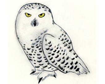 Snowy Owl clipart Art SALE Owl for Snowy