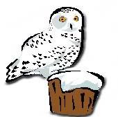 Snowy Owl clipart Clipart echo%20clipart Panda Images Clipart