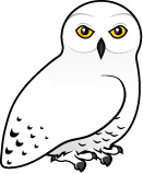 Snowy Owl clipart Clipart Download Owl Clipart Snowy