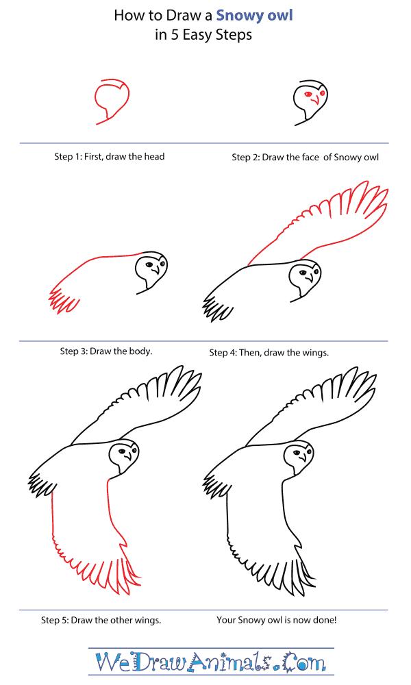 Drawn owl snowy owl #6