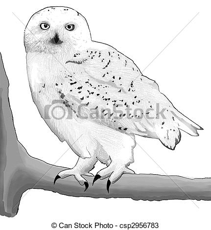 Barn clipart snowy Snowy  of Owl Search
