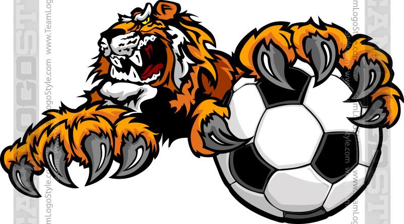 Soccer clipart tiger Tiger Tigers Clipart  Vector