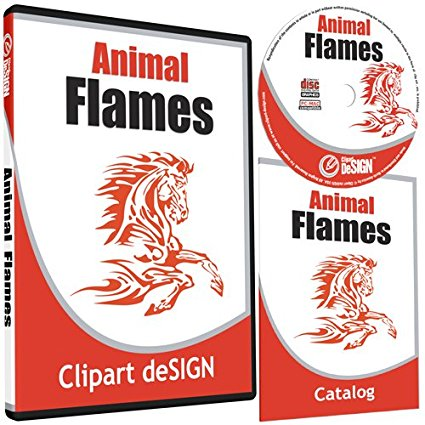 Software clipart practical Digital 48; Clipart File Type