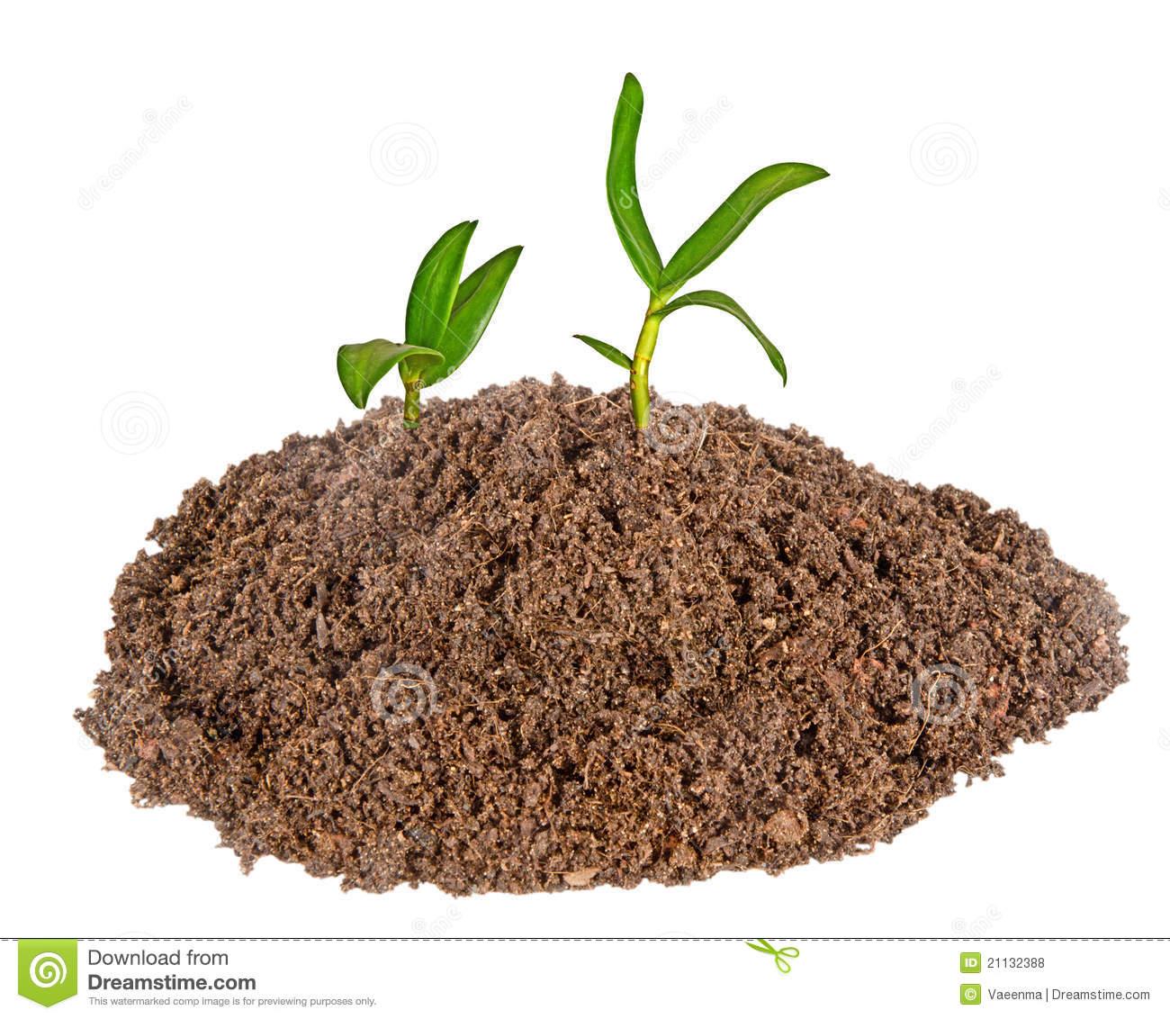 Soil clipart Clipart Clipart Images Free Clipart