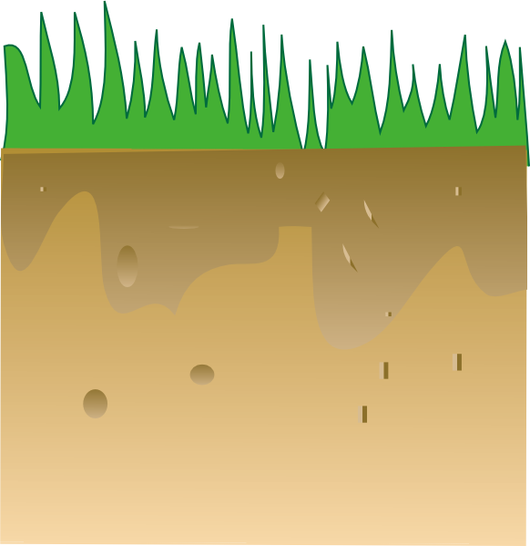 Underground clipart soil layer Soil Soil Layers Of download