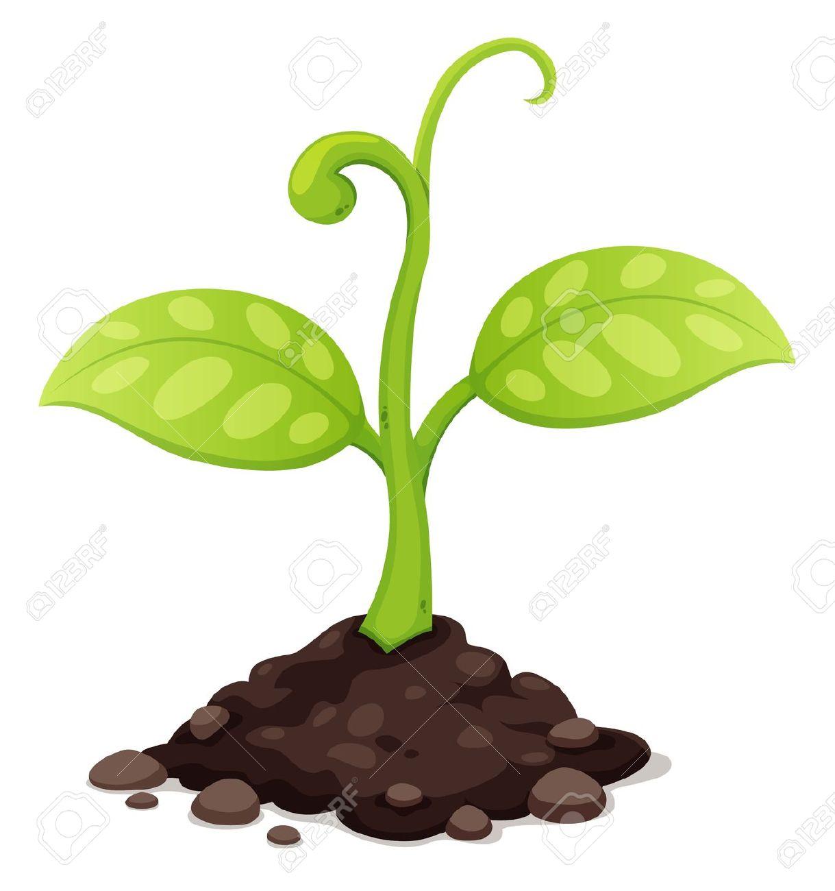 Soil clipart Soil Clipart Clipart Download Soil
