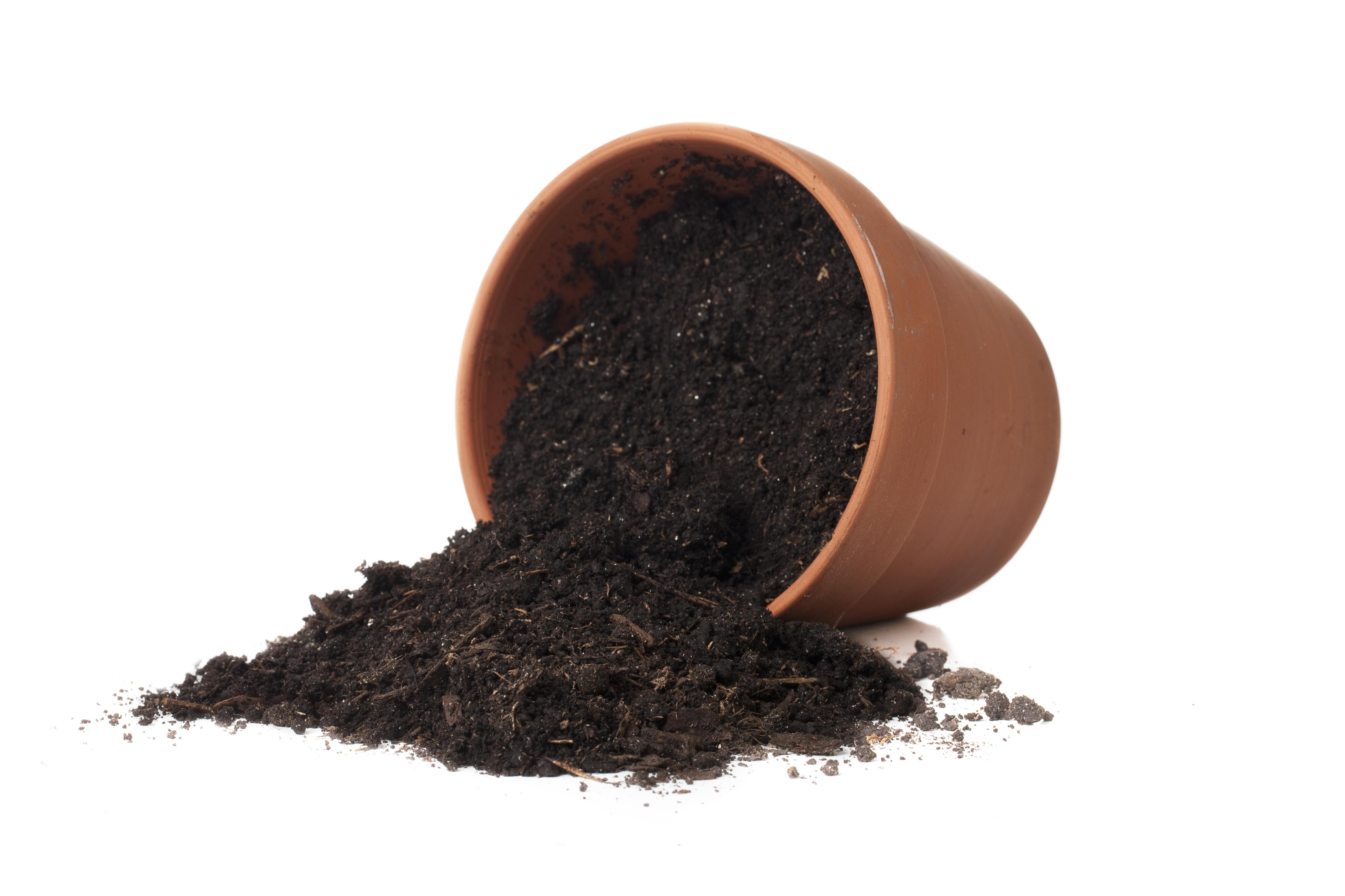 Soil clipart plant It! Dig
