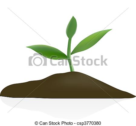 Soil clipart plant Isolated plant soil in in
