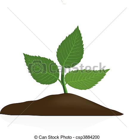 Soil clipart plant Clipart #4 Soil Download clipart