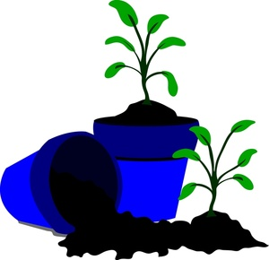 Soil clipart tree sprout Clipart Pot Flower Seedling cliparts