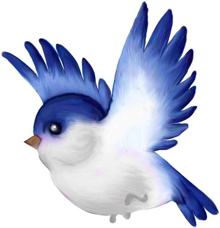 Wings clipart pretty bird ClipartCartoon ♛༻ Christine birds 208