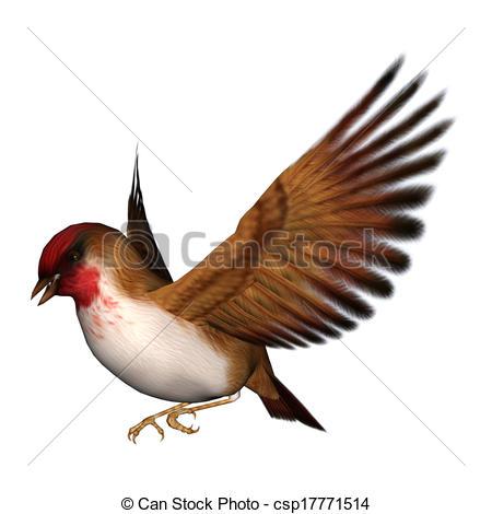 Songbird clipart Digital render Clipart Songbird 3D