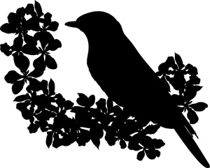 Songbird clipart With Spring in in Perched