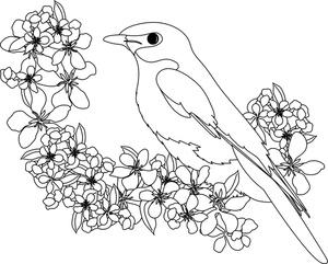 Bluebird clipart songbird On of a Art Clip