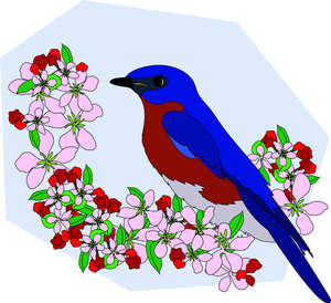 Beautiful clipart beautiful bird Perched Bluebird of Image: Clipart