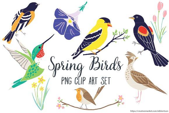 Bird clipart spring bird Illustrations Spring Clipart on Spring