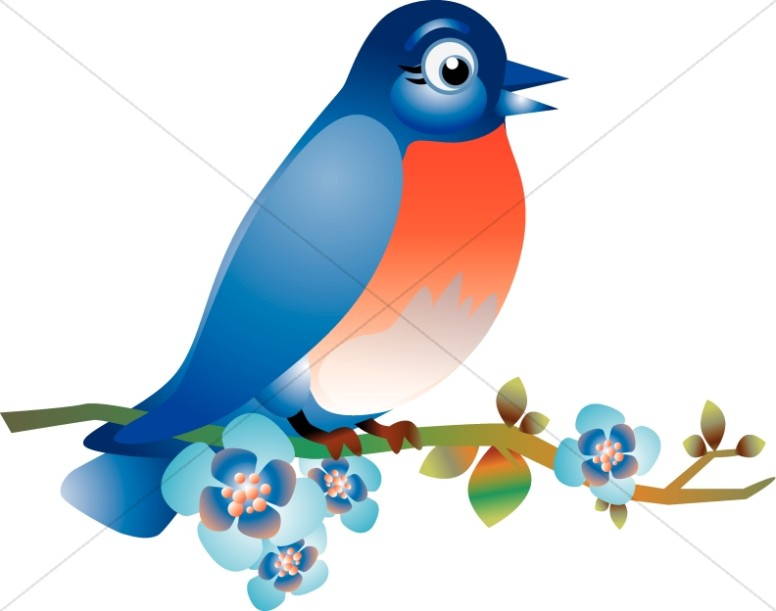 Wildlife clipart songbird Clipart Sharefaith Wildlife Images on