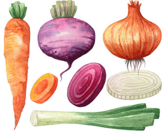 Carrot clipart watercolor Vegetable clipart Lettuce Clipart Cabbage