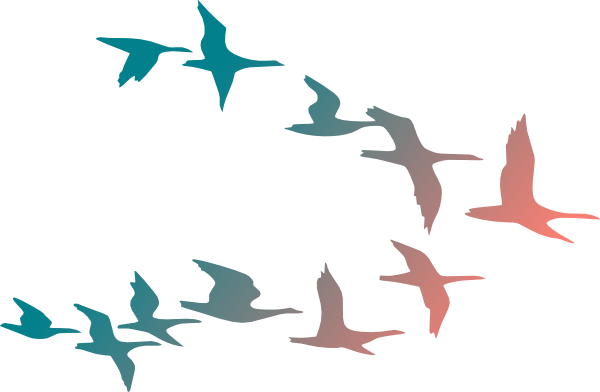 South clipart Clipart South  Birds Flying