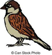 Sparrow clipart 439 hand  drawn