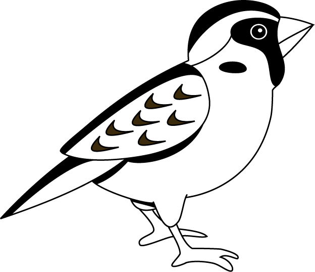 Bird clipart sparrow Inspiration White and Art Cliparts