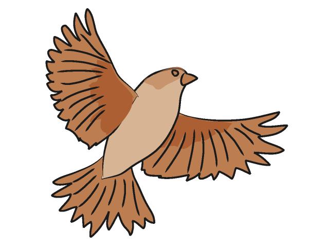 Sparrow clipart 20clipart sparrow%20clipart Clipart Free Panda