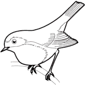 Black clipart sparrow Clipart (wmf 05 of