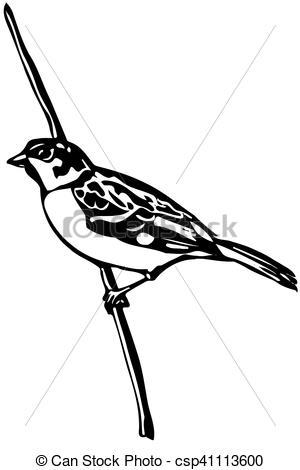 Mockingbird clipart sparrow A bird sparrow little Clipart