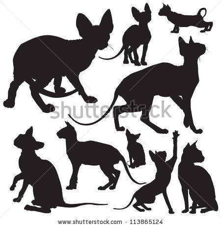 Sphynx Cat clipart Outline outline line silhouette silhouette