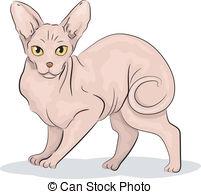 Sphynx Cat clipart Close Clip vector cat breed